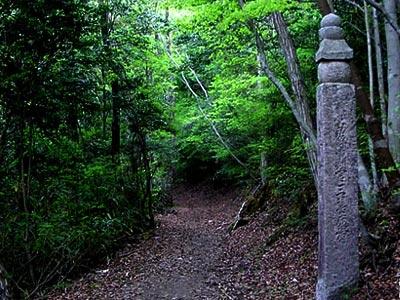 高野山町石道(こうやさんちょういしみち)