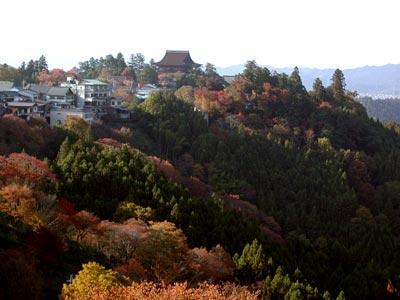 吉野山(よしのさん)